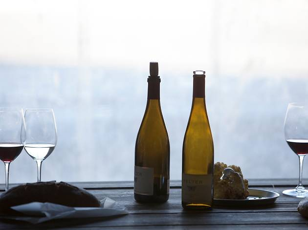 Винодельня Пельтер