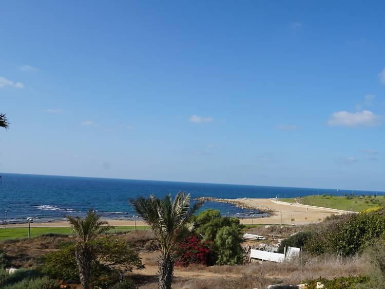 Ajami Beach