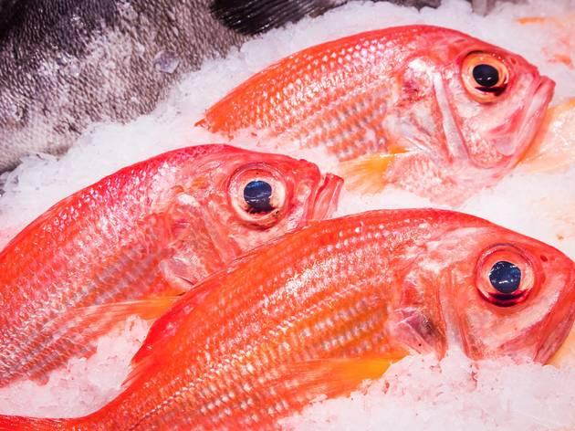 Sydney fish market tour with Josh Niland of Saint Peter