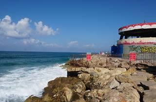 Dolphinarium Beach