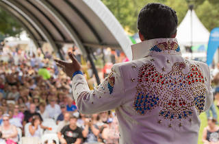 Elvis impersonator performing on stage