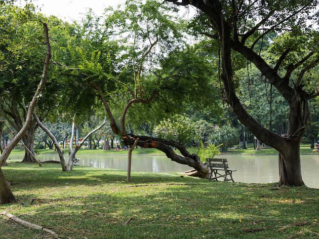 Chatuchak Park
