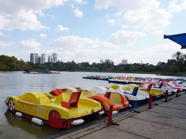 Аренда лодок в парке Яркон