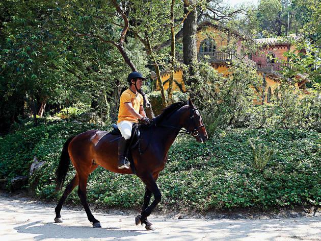 Passeio de Cavalo