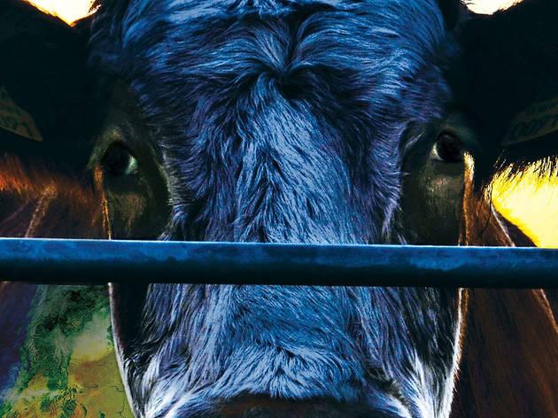 'Cowspiracy' screening