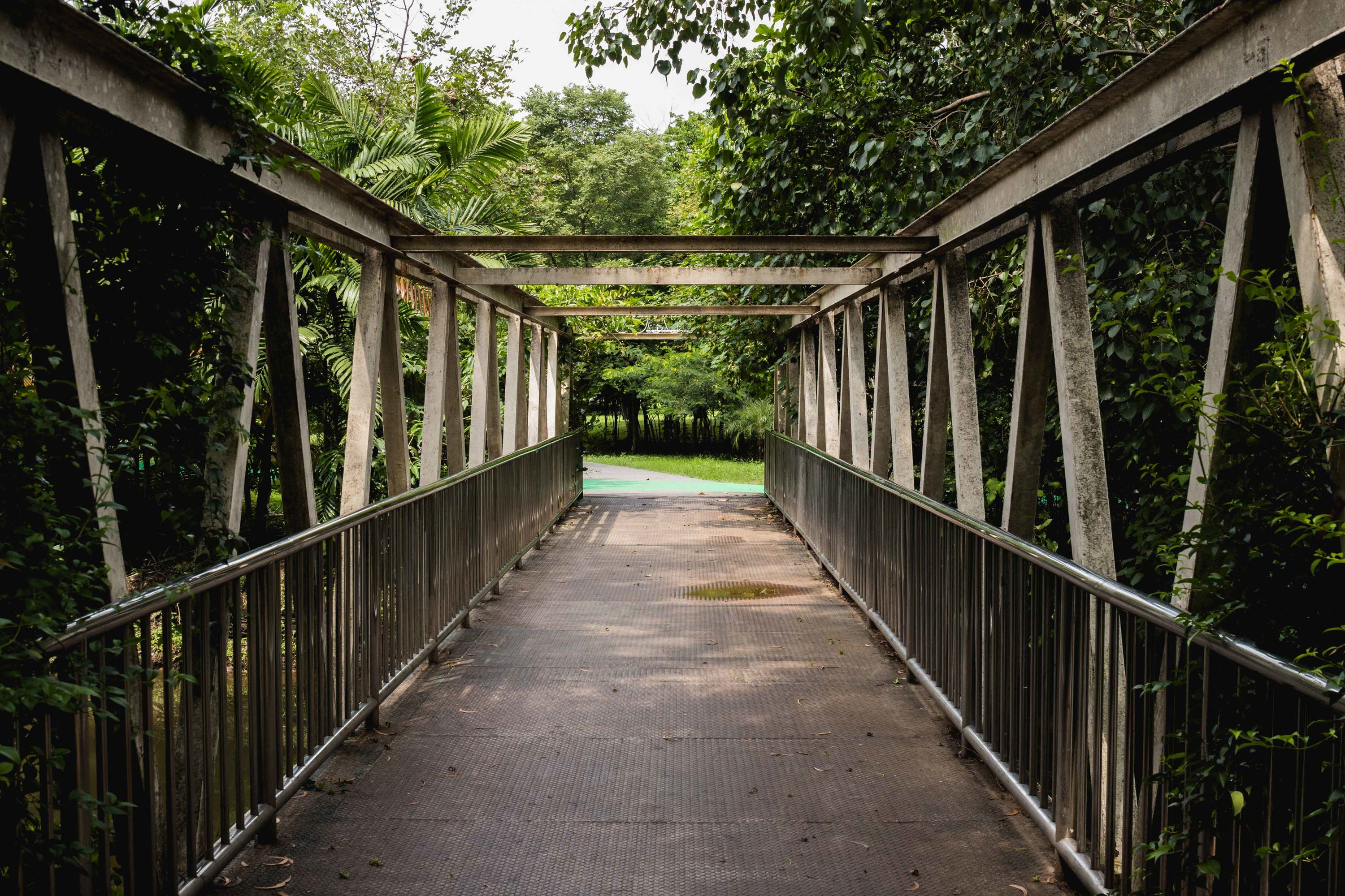 A bridge at the rodfai Park
