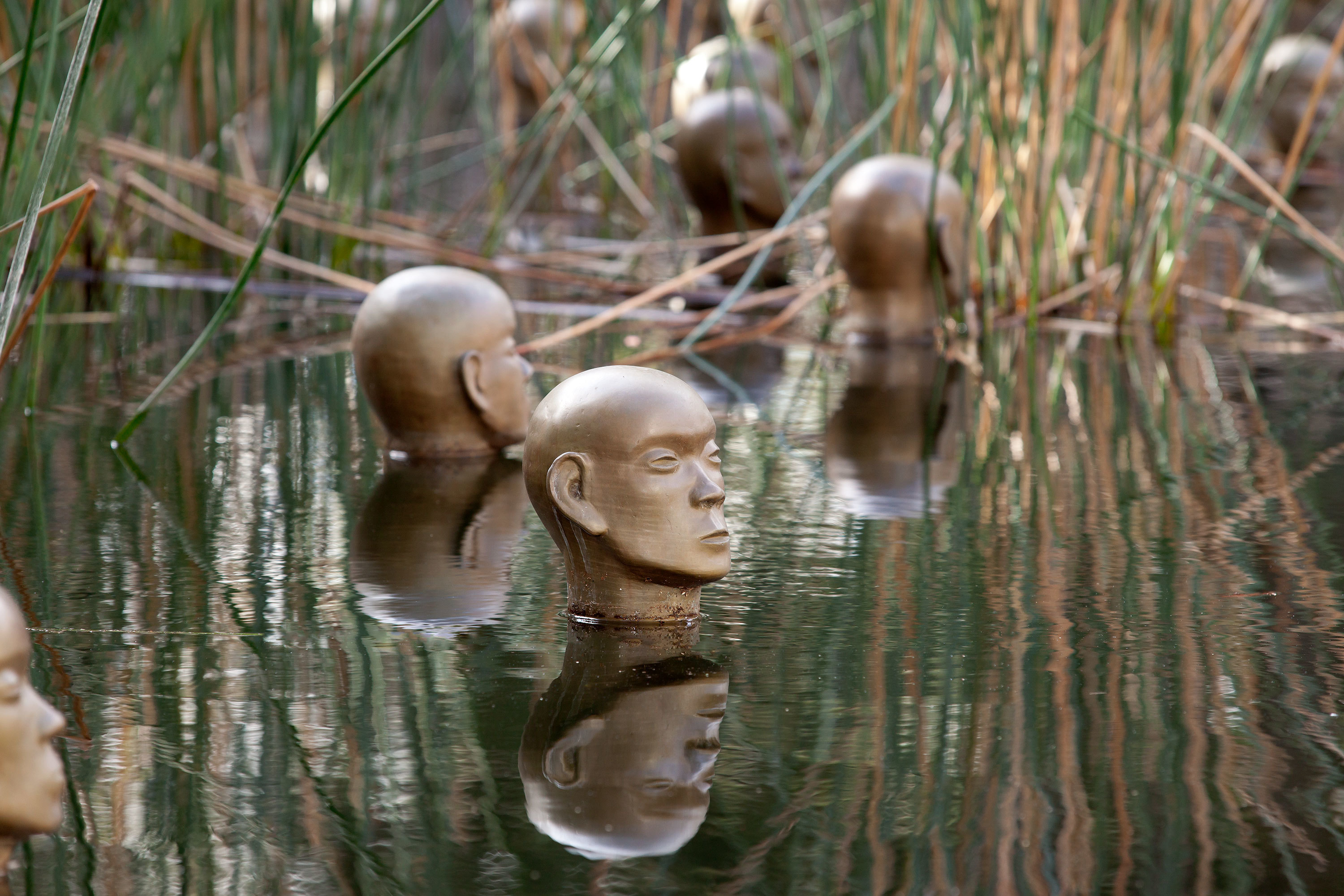 Bronze heads poke out from a pond amongst the rushes