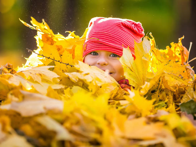 14 adorable fall baby names you'll love