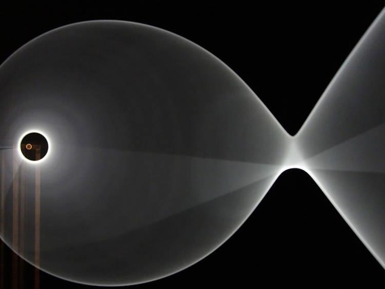 2.11,5 Hz, de Kai van der Puij