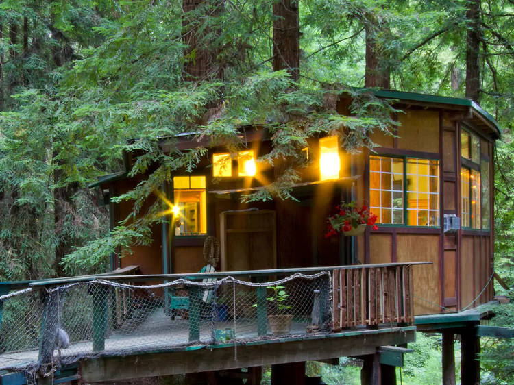 Redwood Treehouse Santa Cruz Mountains (Watsonville)