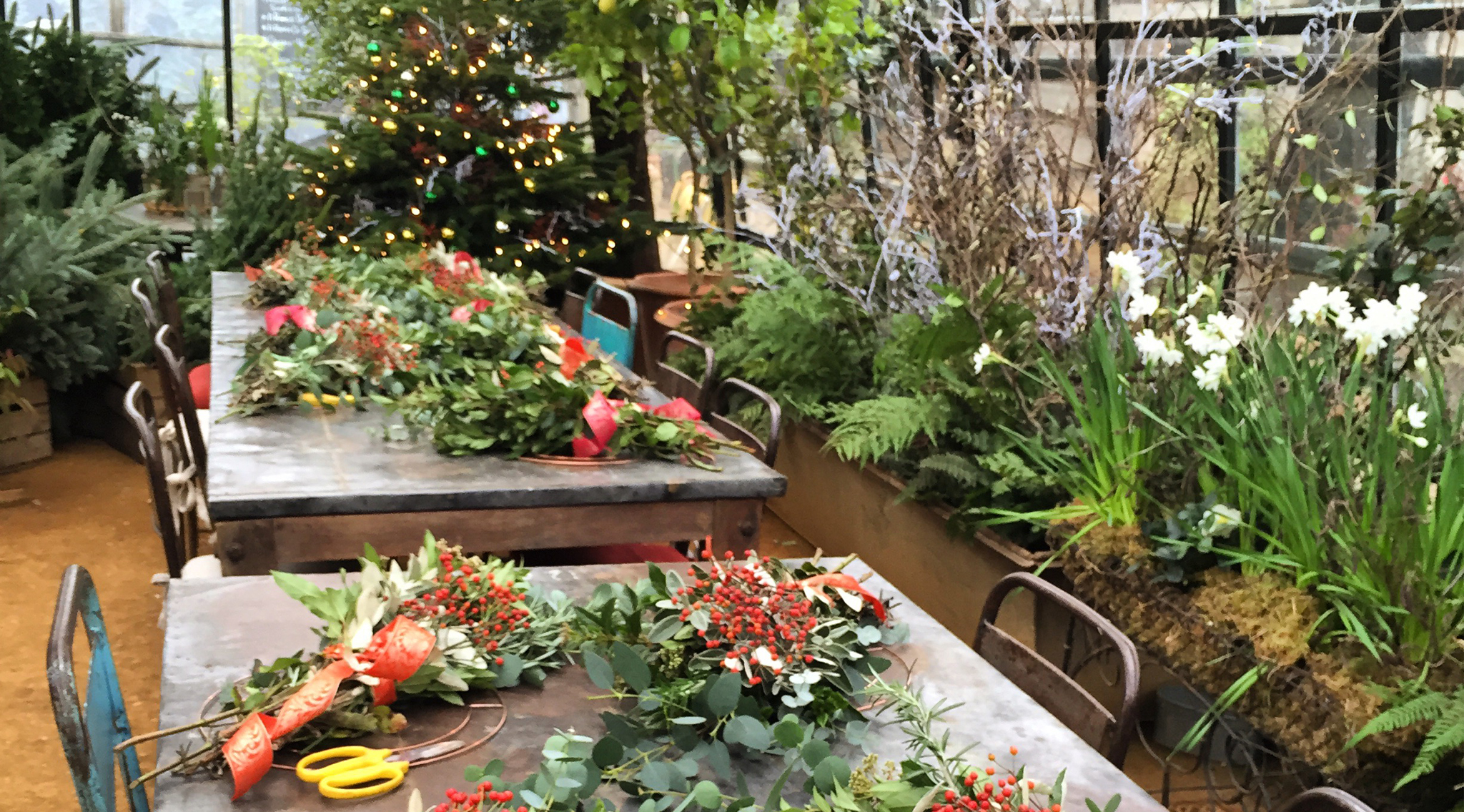 Christmas at Petersham Nurseries