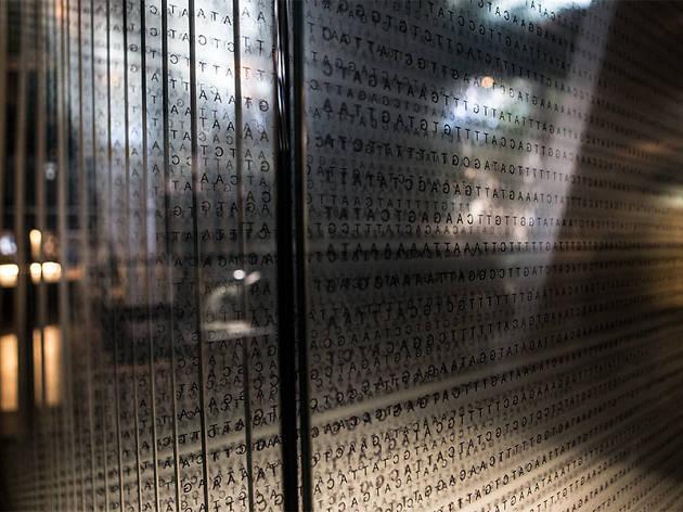 7 fites de la ciència que pots comprendre a CosmoCaixa