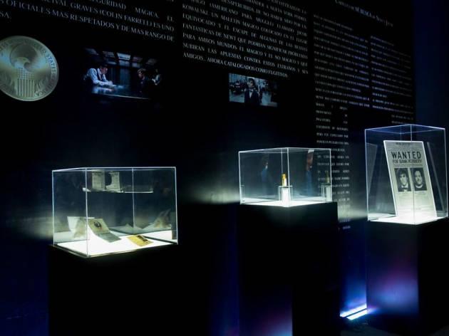 Exhibición de objetos: Animales fantásticos y dónde encontrarlos