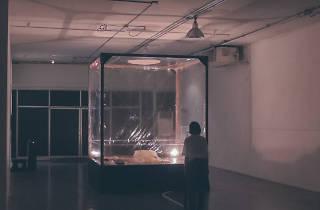 Tadu Contemporary Art