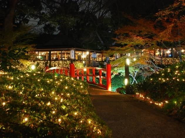 Japanese Garden At Night hotel new otani japanese garden illumination | things to do in tokyo