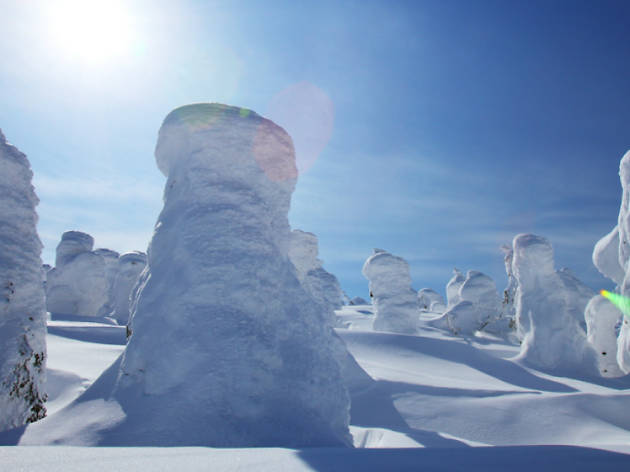 snow, tourism japan