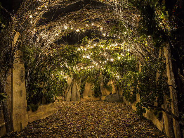 Backyard Cinema S Winter Night Garden Things To Do In London