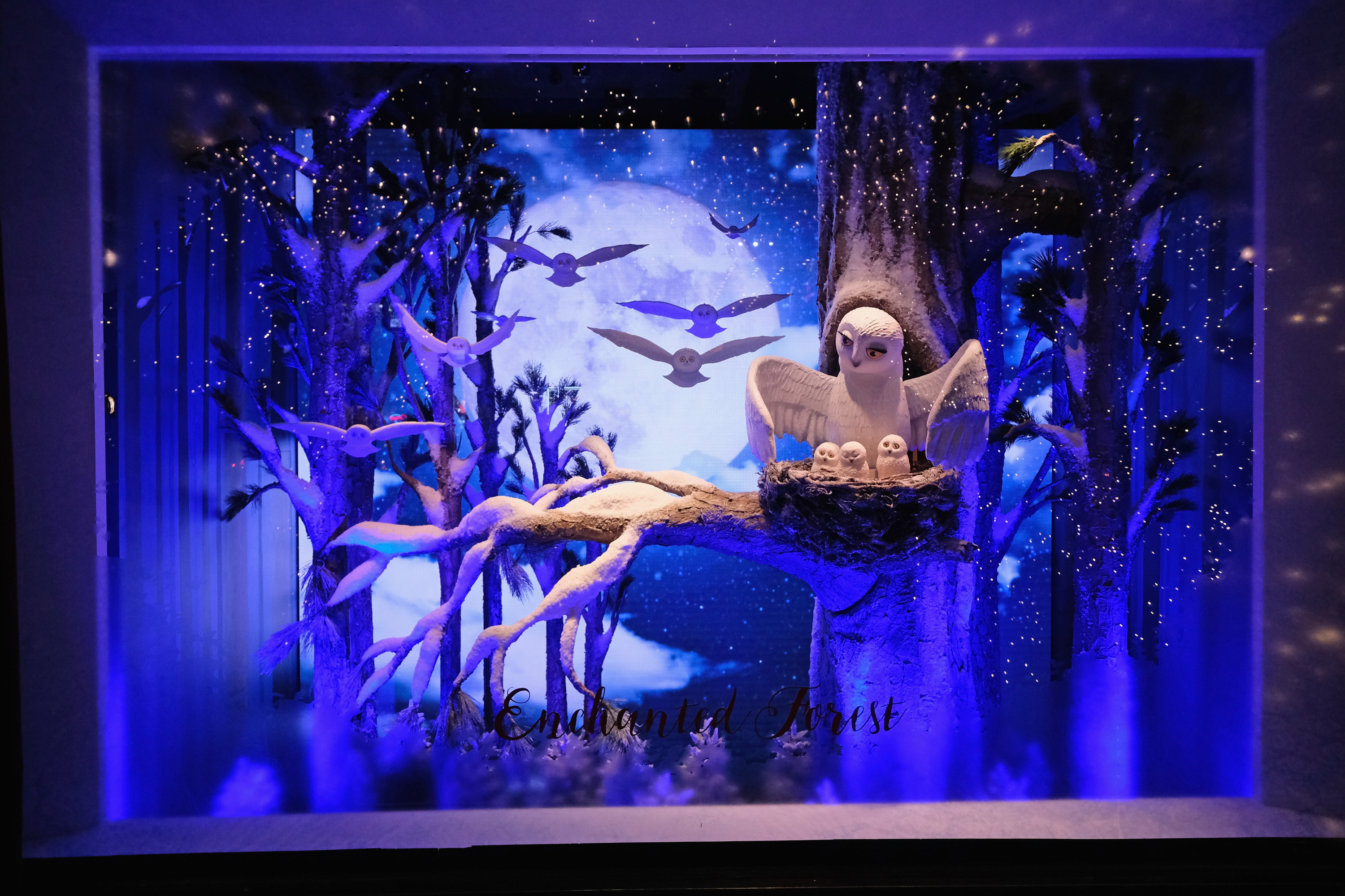Lord & Taylor's magical holiday window