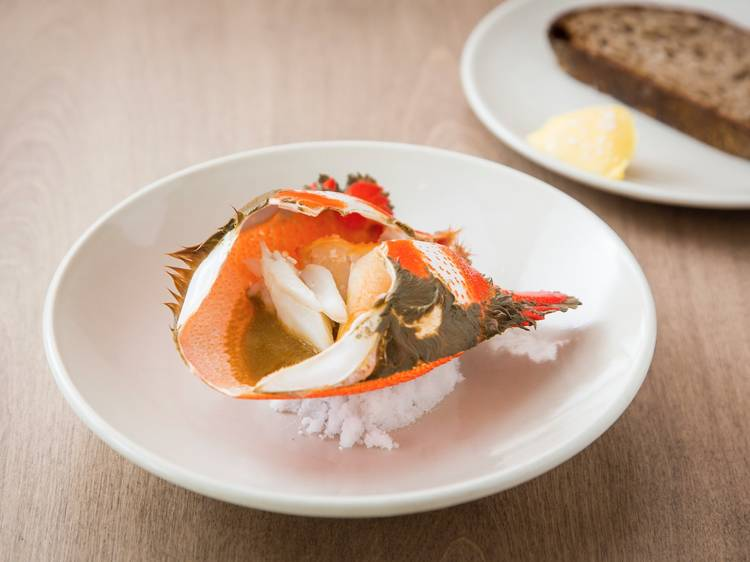 Experience game-changing seafood at Saint Peter