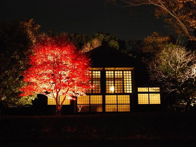 前川邸ライトアップ