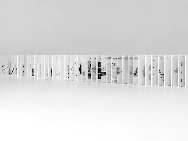 デザインの理念と形成:デザイン学の50年