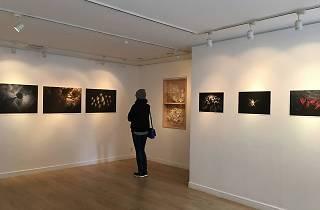 Daikanyama Gallery 1F