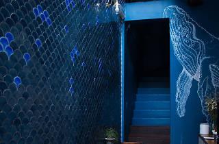 Blue Wale Maharaj
