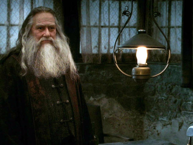 Dumbledore brother, Harry Potter, Fantastic Beasts