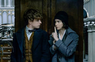Eddie Redmayne and Katerine Waterson in Fantastic Beasts and Where to Find Them