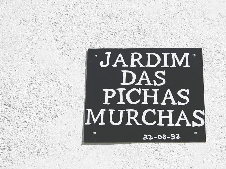 """Passear num jardim """"das Pichas Murchas"""""""