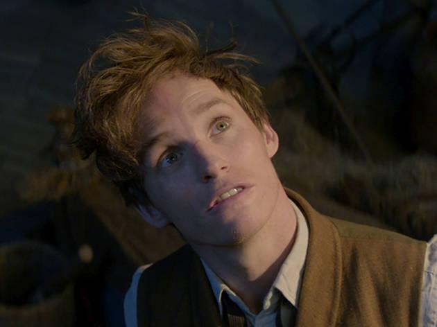 Eddie Redmayne in Fantastic Beasts