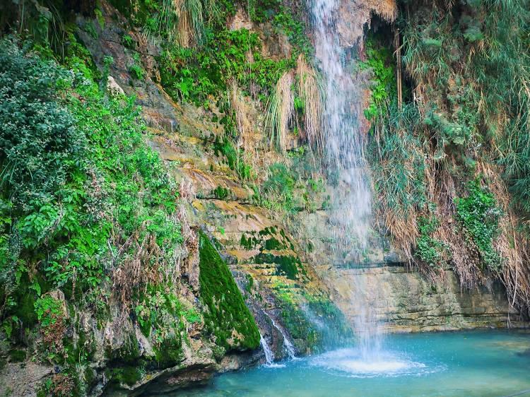 Le Ruisseau de Nahal David
