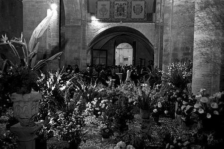 Temps de Flors, 1970