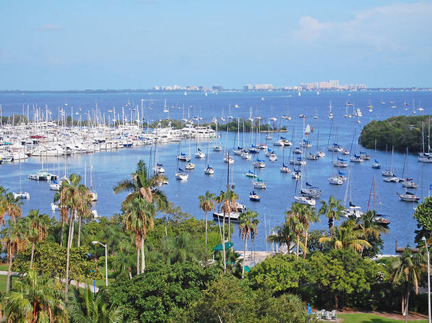Your perfect day in Coconut Grove
