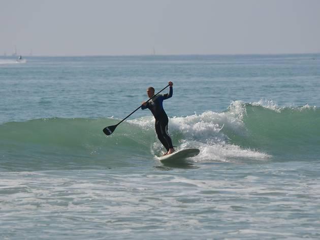 Padle Surf