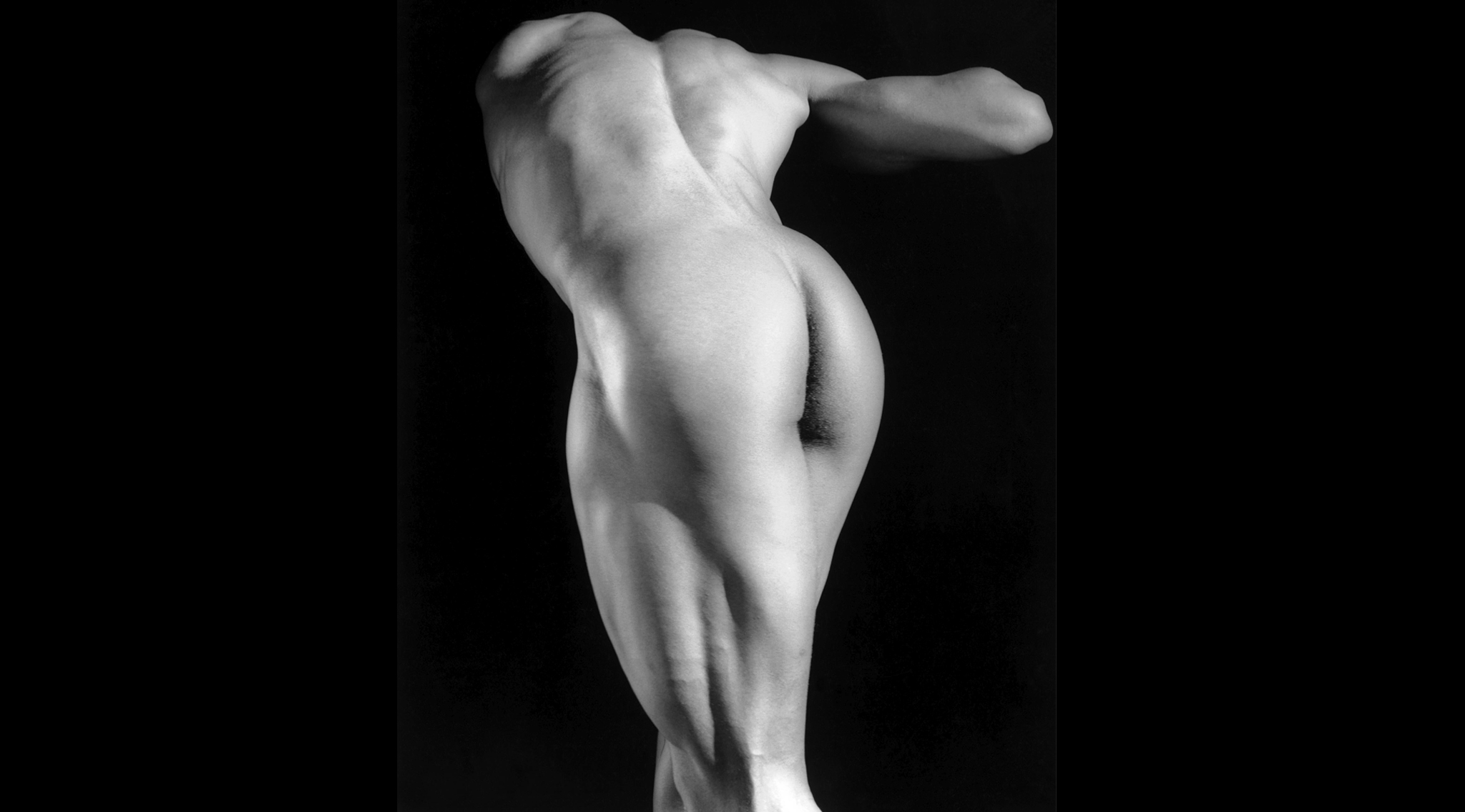 Robert Mapplethorpe: 'Michael Reed', 1987 © Robert Mapplethorpe Foundation
