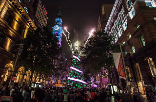 Sydney Christmas Martin Place
