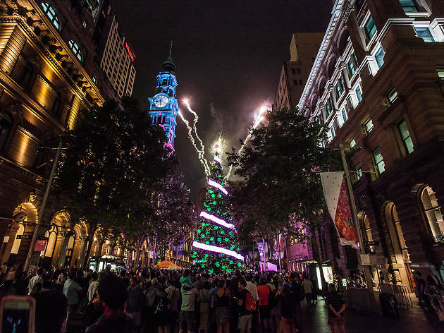 Martin Place Christmas Concert And Tree Lighting Kids In