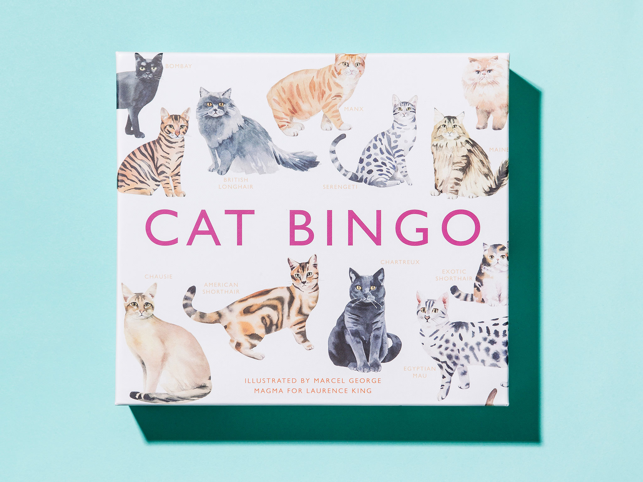 'Cat Bingo' book