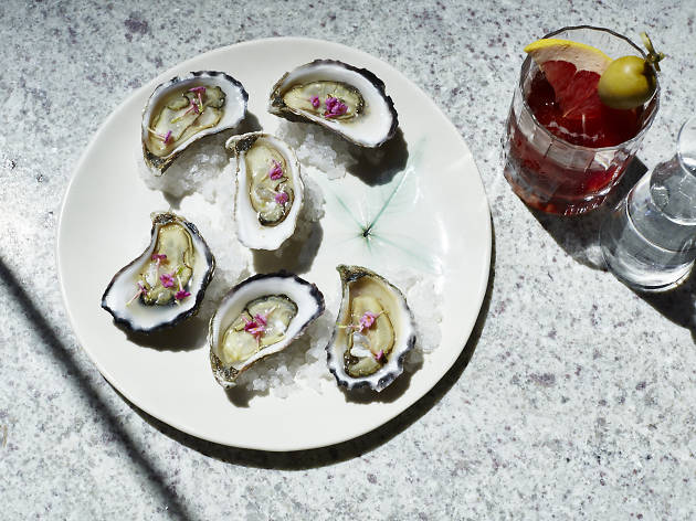 Rock oysters at Banksii