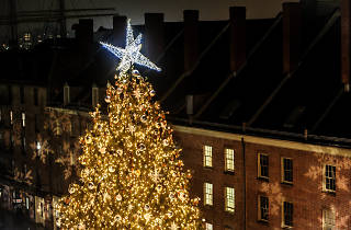 Tree Lighting at Seaport District NYC