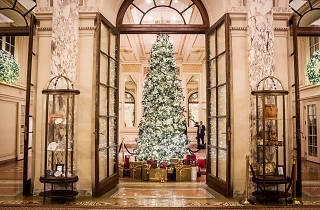The Plaza Hotel Tree Lighting Ceremony