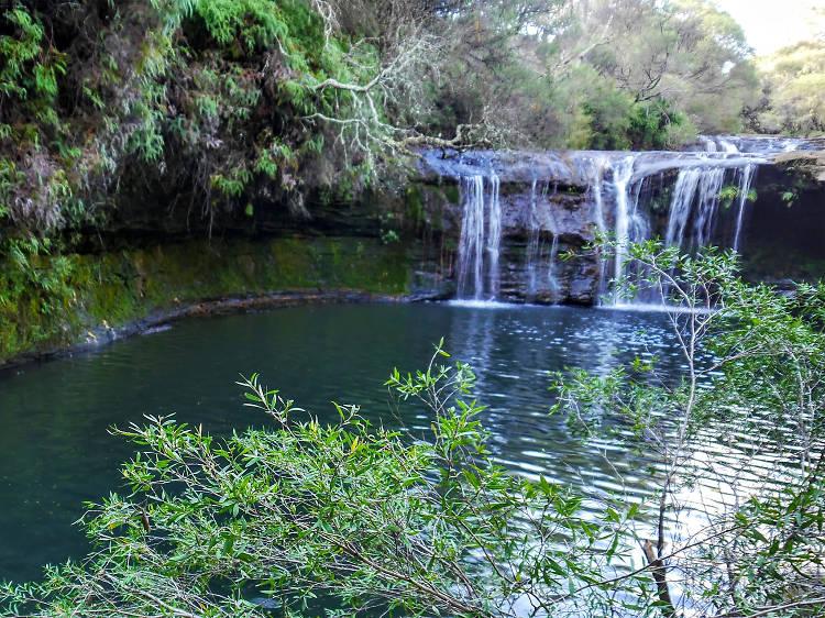 Carrington Falls and Nellie's Glen