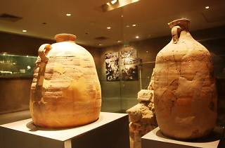 Wohl Archaeological Museum