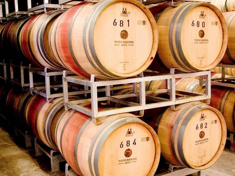The juice of Jerusalem: wineries in and around the Holy City