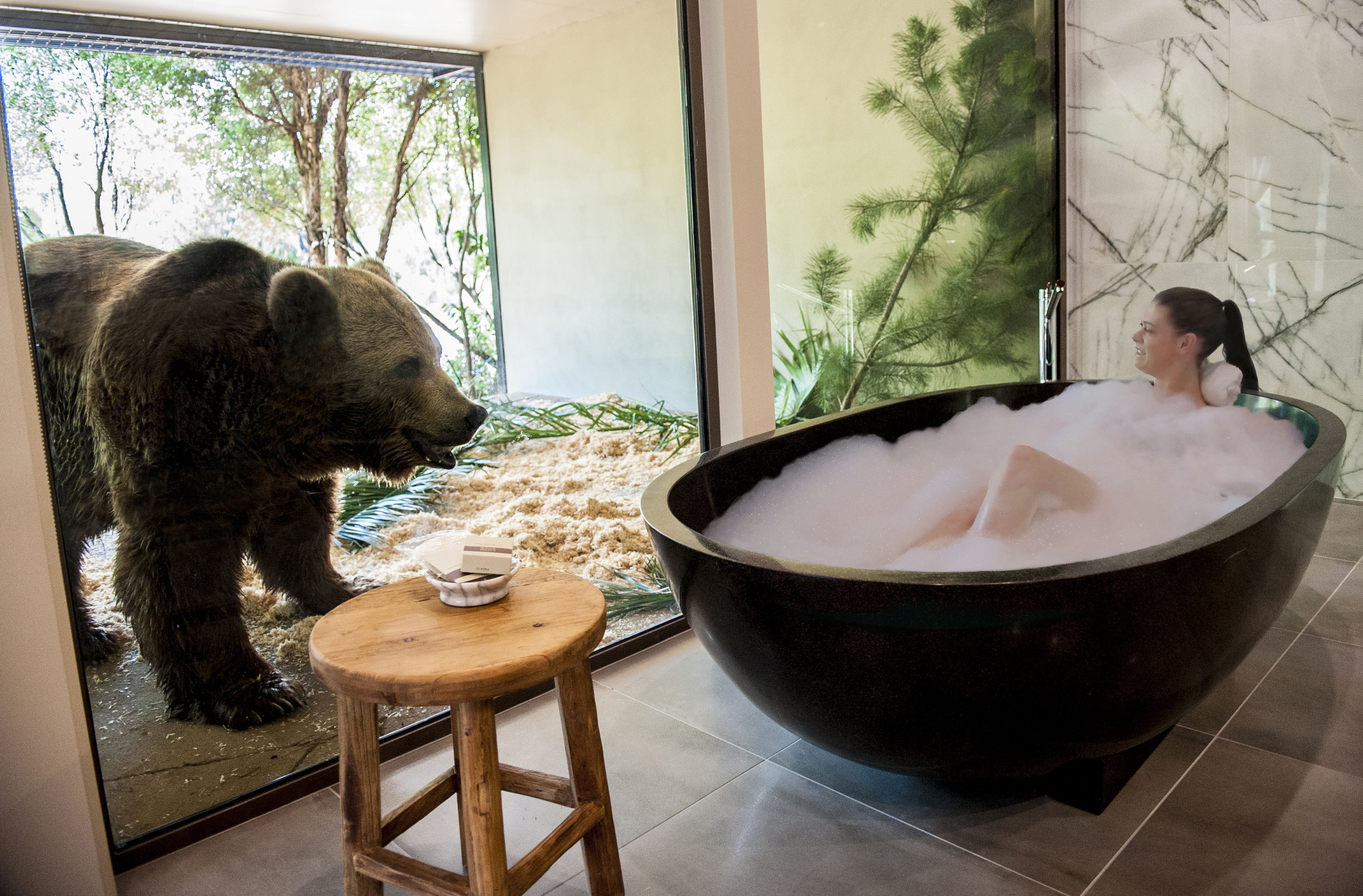 The chance to live with a bear