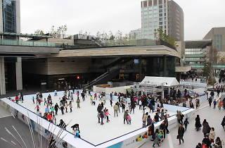Futako-Tamagawa Rise Skate Garden