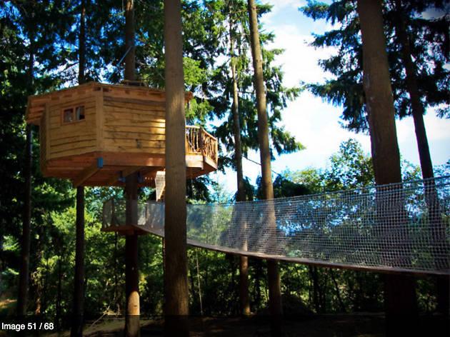 Cabana als arbres