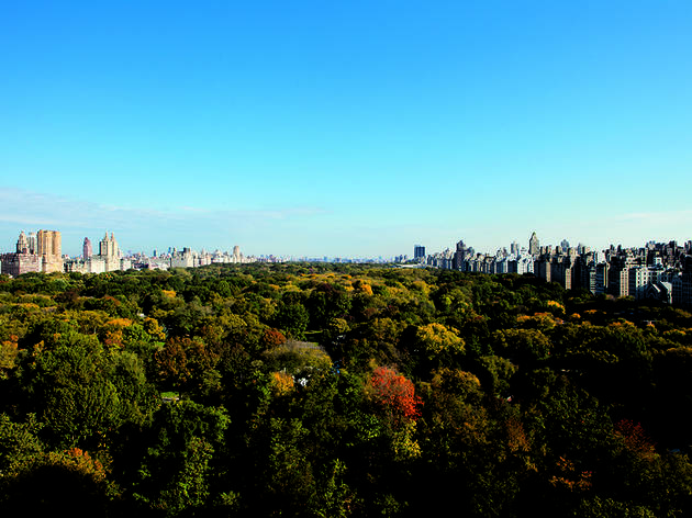 Ritz-Carlton Central Park (Photograph: Courtesy Ritz-Carlton Central Park)