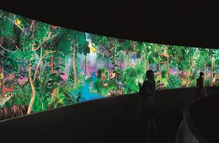 Story of a Forest, National Museum Singapore, teamLab